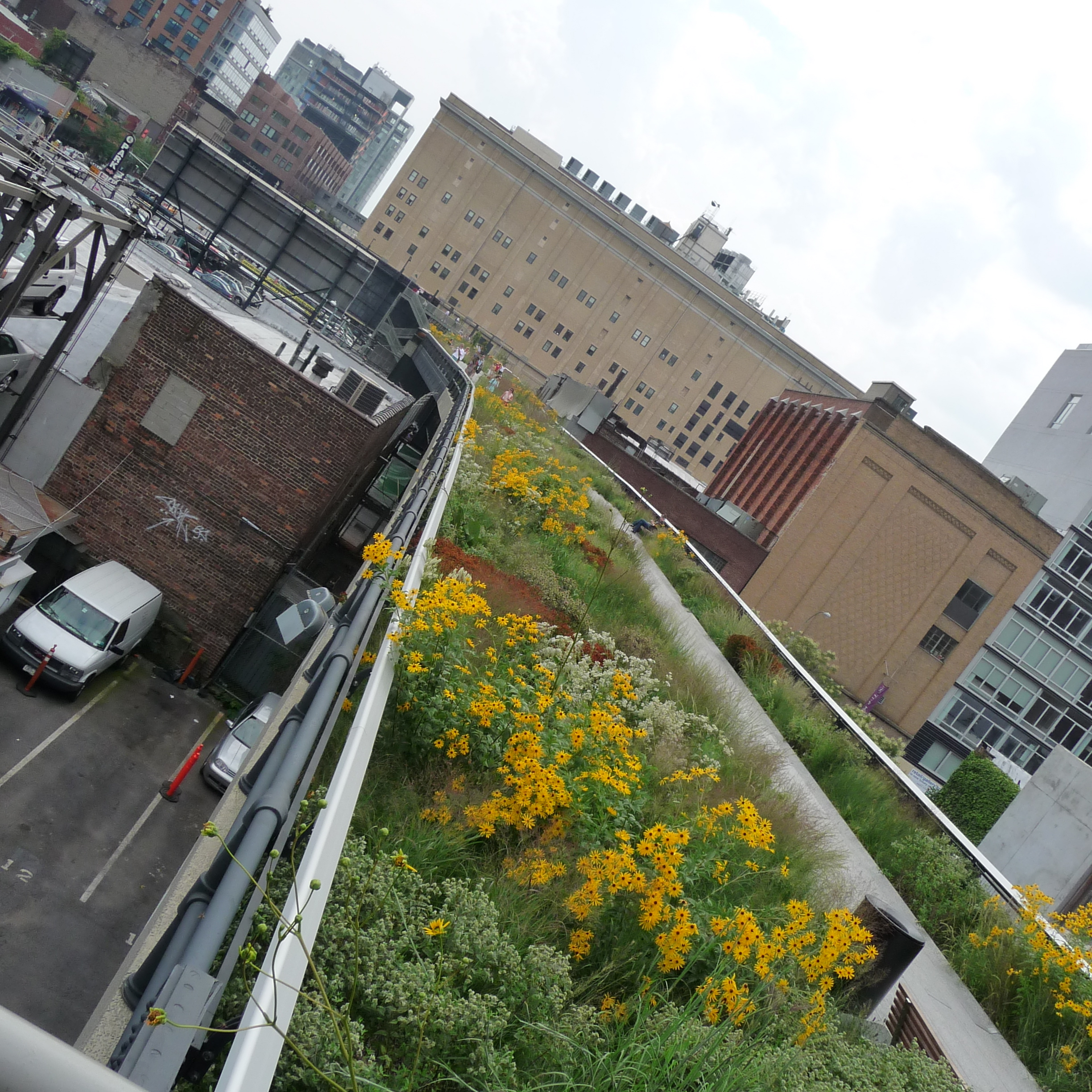 The High Line in New York City brings much-needed green space to the city's west side